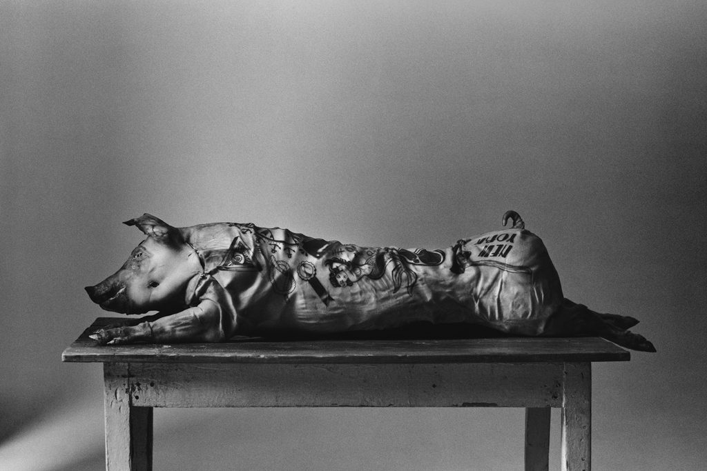 BIRTH Production - Photographers > PORTRAITS - Image30